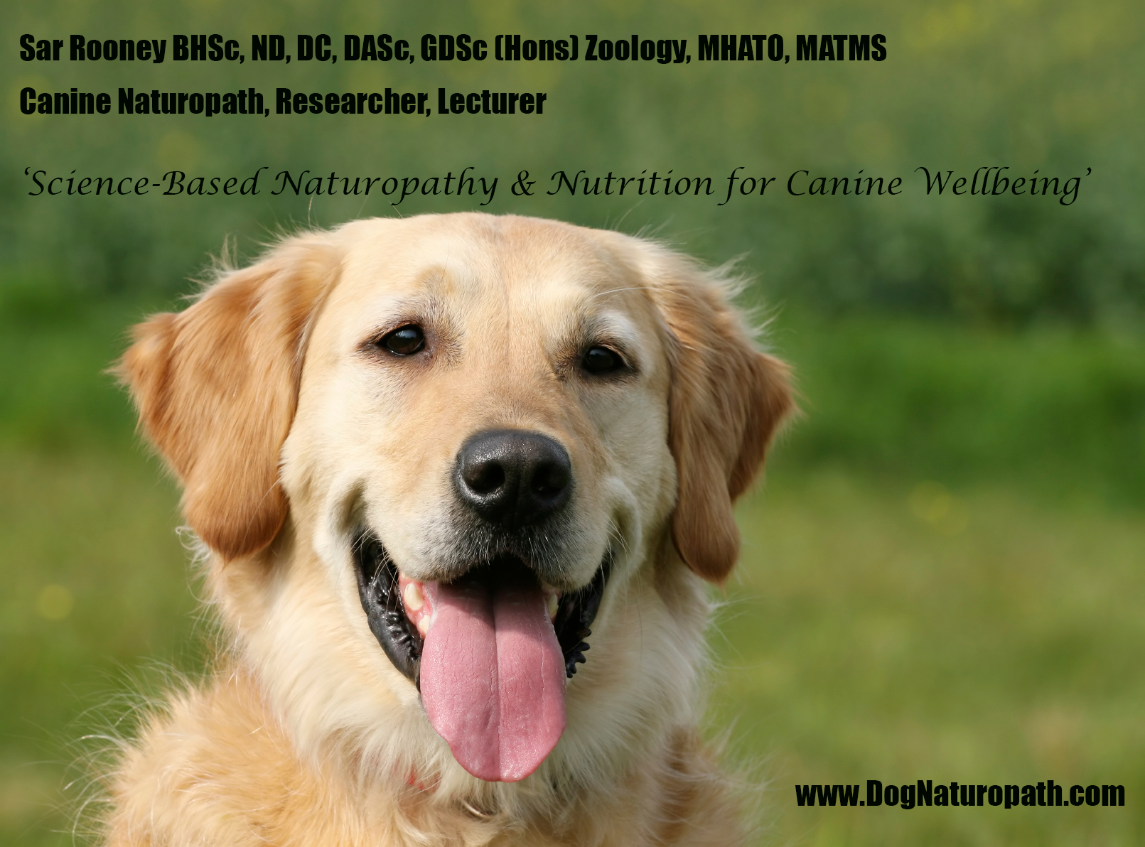 Canine herbal therapy - Dog Naturopath Signature Meme